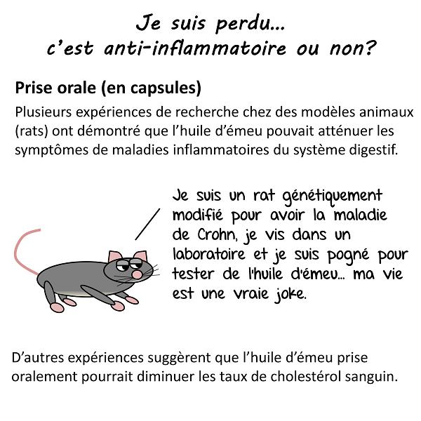 Expériences chez les rats: efficace dans certaines maladie inflammatoires intestinales comme maladie de Crohn et cholestérol